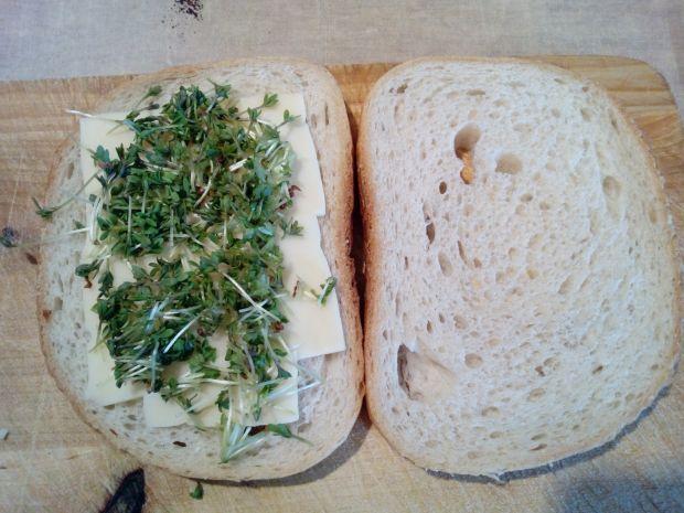 Tost z serem i rzeżuchą
