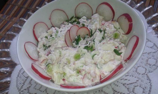 Twarożek z rzodkiewką,cebulką zieloną tak wiosenni