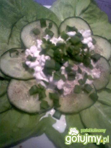 Twarożek z zieloną sałatą i ogórkiem