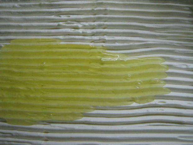 Warstwowiec cytrynowy