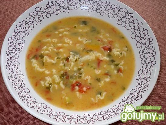 Wielowarzywna zupa z makaronem Mysiuni