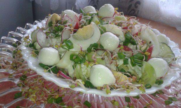 Wiosenna sałatka z rzodkiewką,mozzarellą,jajkiem..