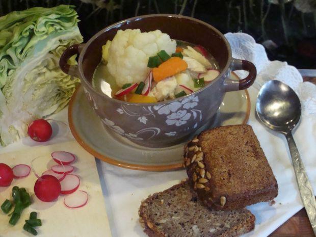 Wiosenna zupa na rosole