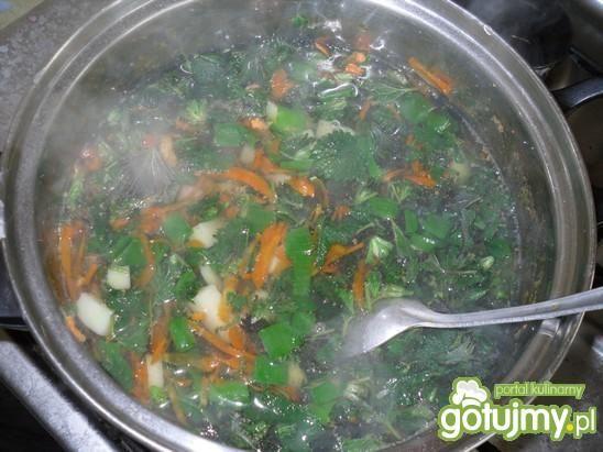Wiosenna zupa z młodych pokrzyw