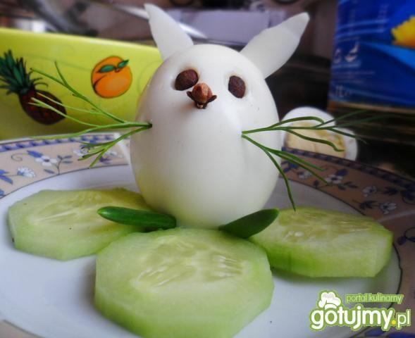 Zajączek z jajka
