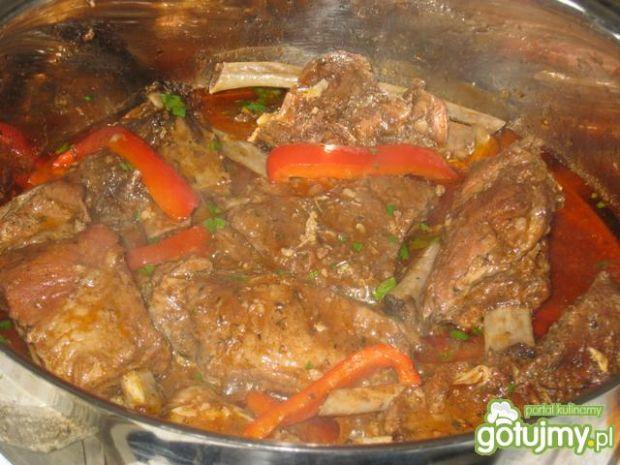 Zeberka w sosie paprykowo-pomidorowym