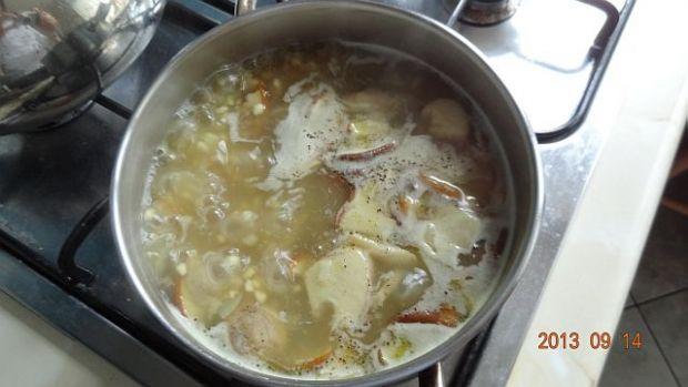 Zupa borowikowa dla mojego synka