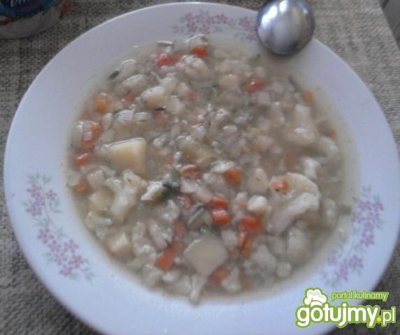 Zupa jarzynowa wg Madiji
