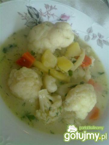Zupa jarzynowa/kalafiorowa