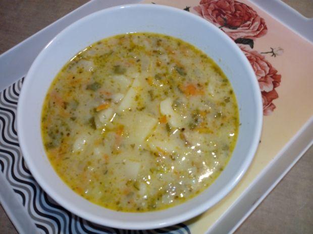 Zupa jarzynowo -ogórkowa na wędzonej kości