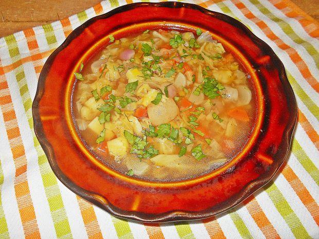 Zupa kapuściano-rzodkiewkowa