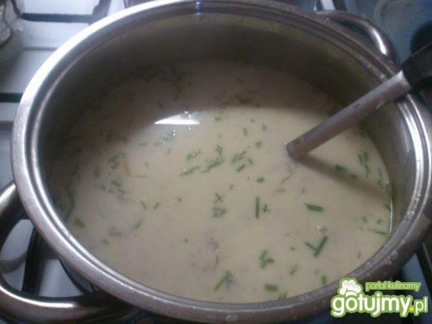 Zupa koperkowa wg mariel78