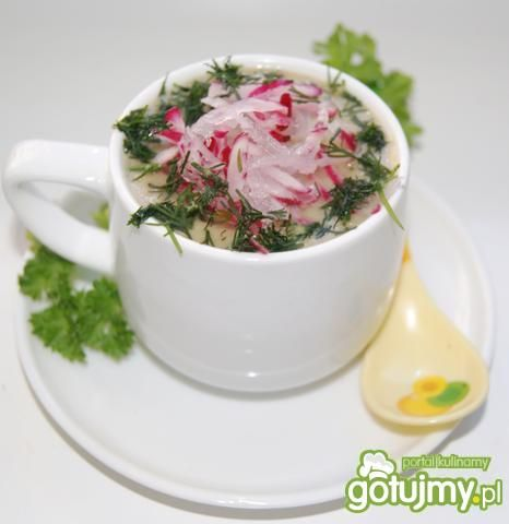 Zupa krem z rzodkiewki