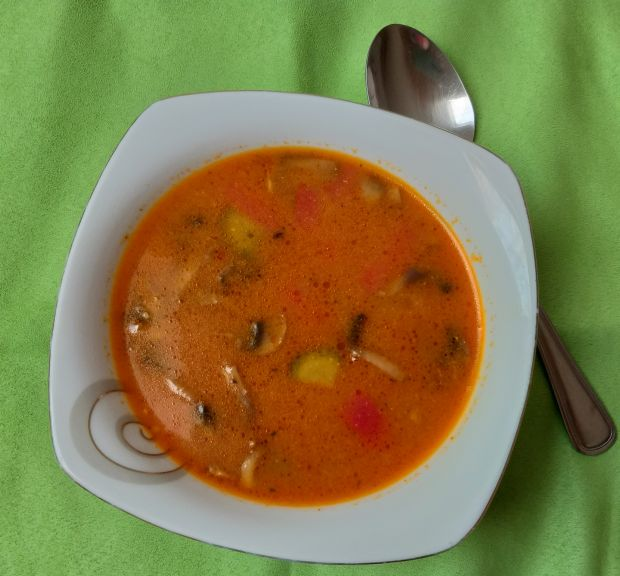 Zupa kurczakiem a la strogonow