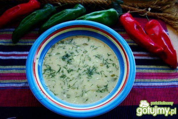 Zupa małosolna z serkiem topionym