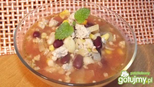 Zupa meksykanka