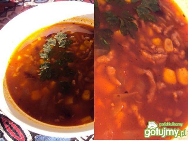 Zupa meksykańska wg przejs