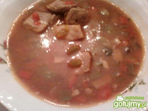 Zupa mięsna z ogórkiem i papryką