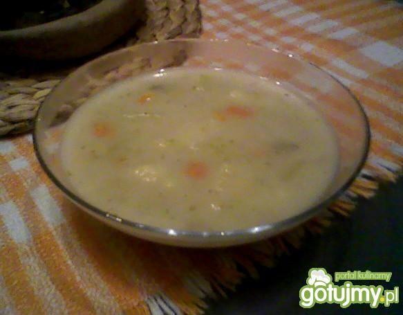Zupa ogórkowa (jarska)