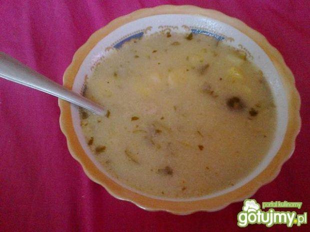 Zupa ogórkowa wg Smakowitej
