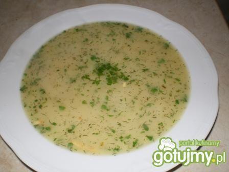 Zupa ogórkowa z warzywami