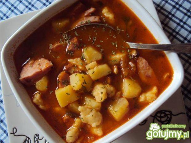 Zupa pasterska