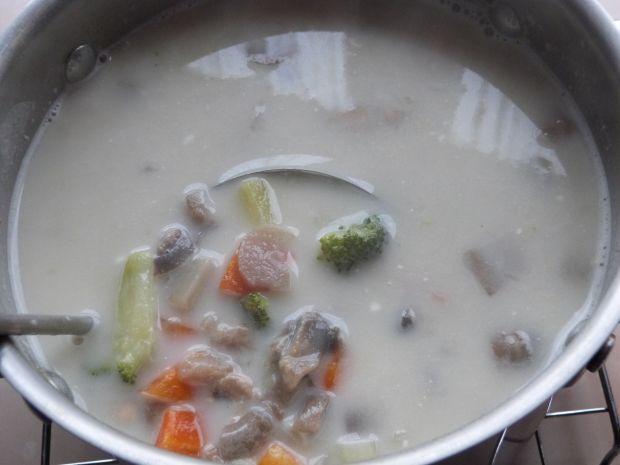 Zupa pieczarkowa z koperkiem i ziemniakami