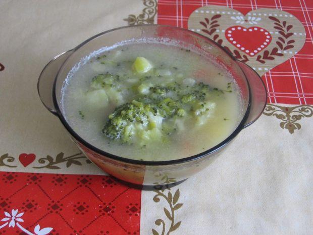 Zupa porowo-brokułowa