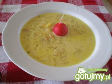 Zupa rzodkiewkowa