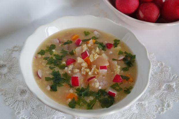 Zupa rzodkiewkowa z soczewicą i jaglanką