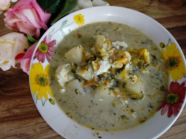 Zupa szczawiowa z pasternakiem, na rosole