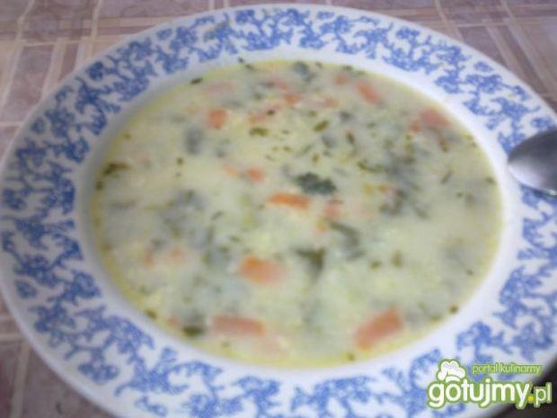 Zupa szczawiowa zabielana