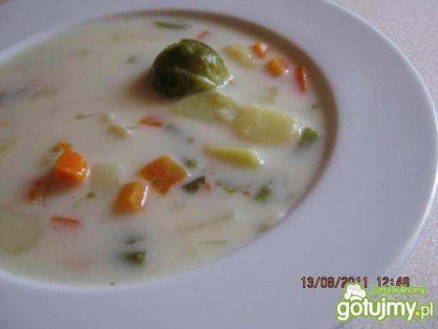 Zupa wielowarzywna.