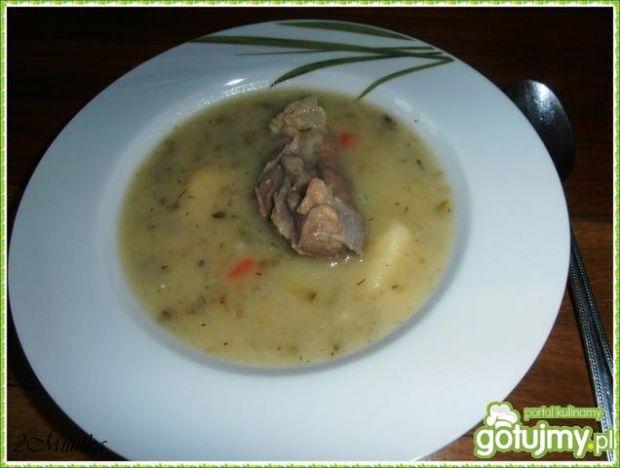 Zupa z cukinii i czosnku