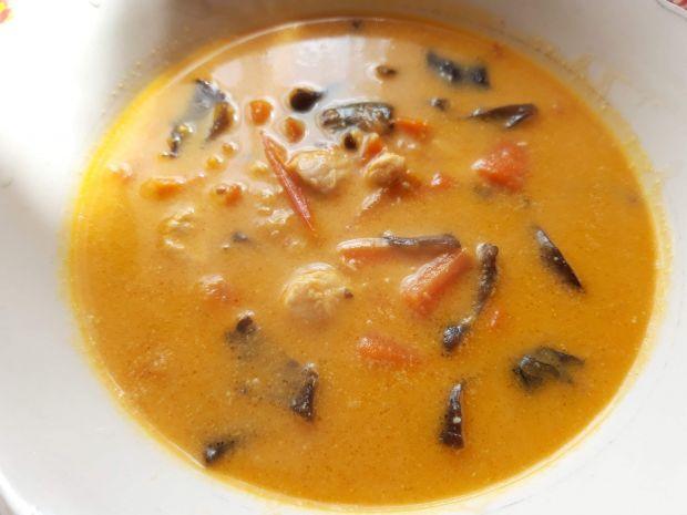 Zupa z kurczakiem i pastą curry