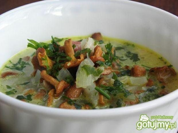 Zupa z kurek.