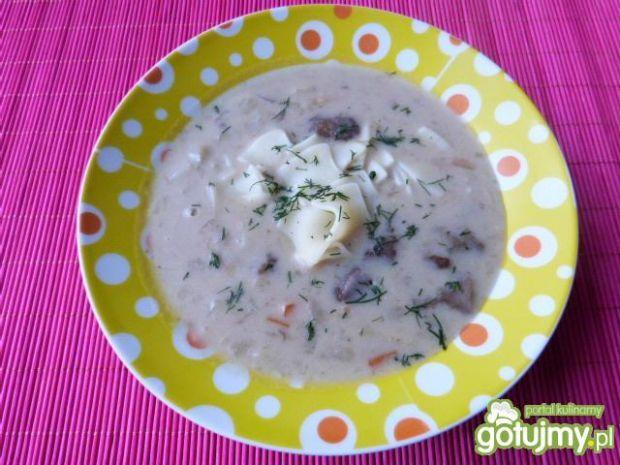 Zupa z leśnych grzybów z łazankami