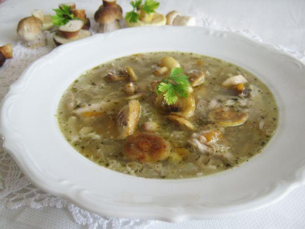 Zupa z maślakami