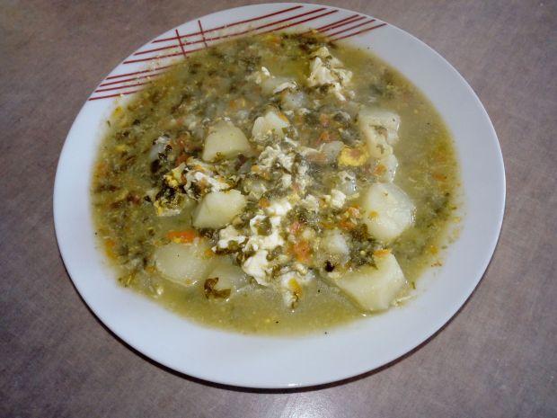 Zupa z młodego szczawiu