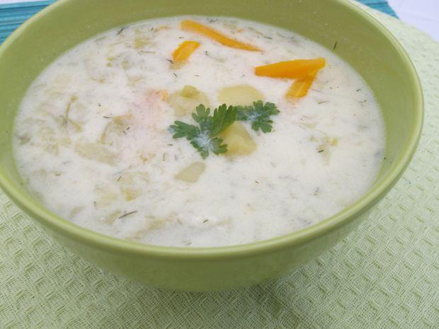 Zupa z młodej kapusty i warzyw.