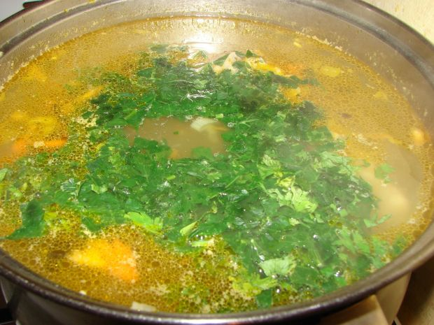 Zupa z porem i jarzynami