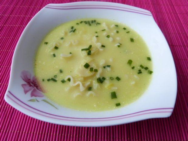 Zupa z porów z makaronem