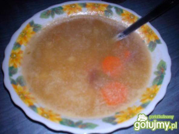 Zupa z prażoną cebulką