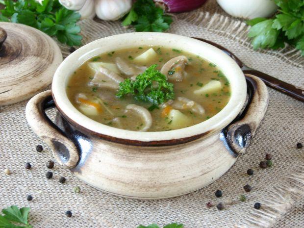 Zupa ze świeżych maślaków