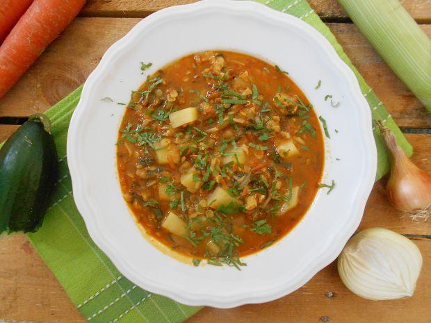 Zupa ze świeżych ogórków z soczewicą