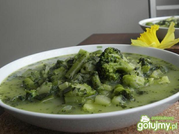 Zupa-zielony kwiecień.
