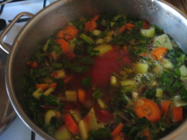 zupka wiosenna