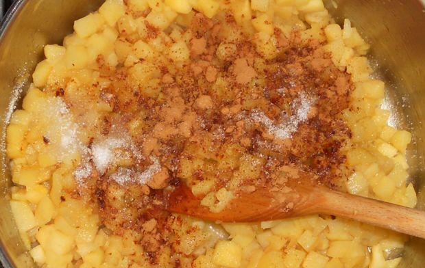 Jabłecznik na spodzie ryżowo-owsianym