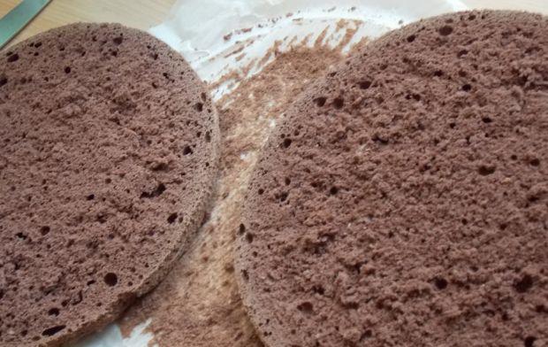 Kakaowy kasztanowiec