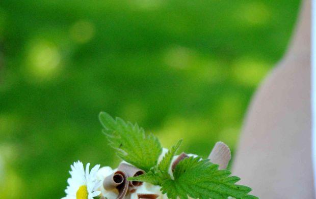 Szpinakowo- pokrzywowe pampuchy